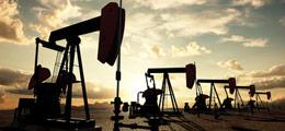 3496969_oil